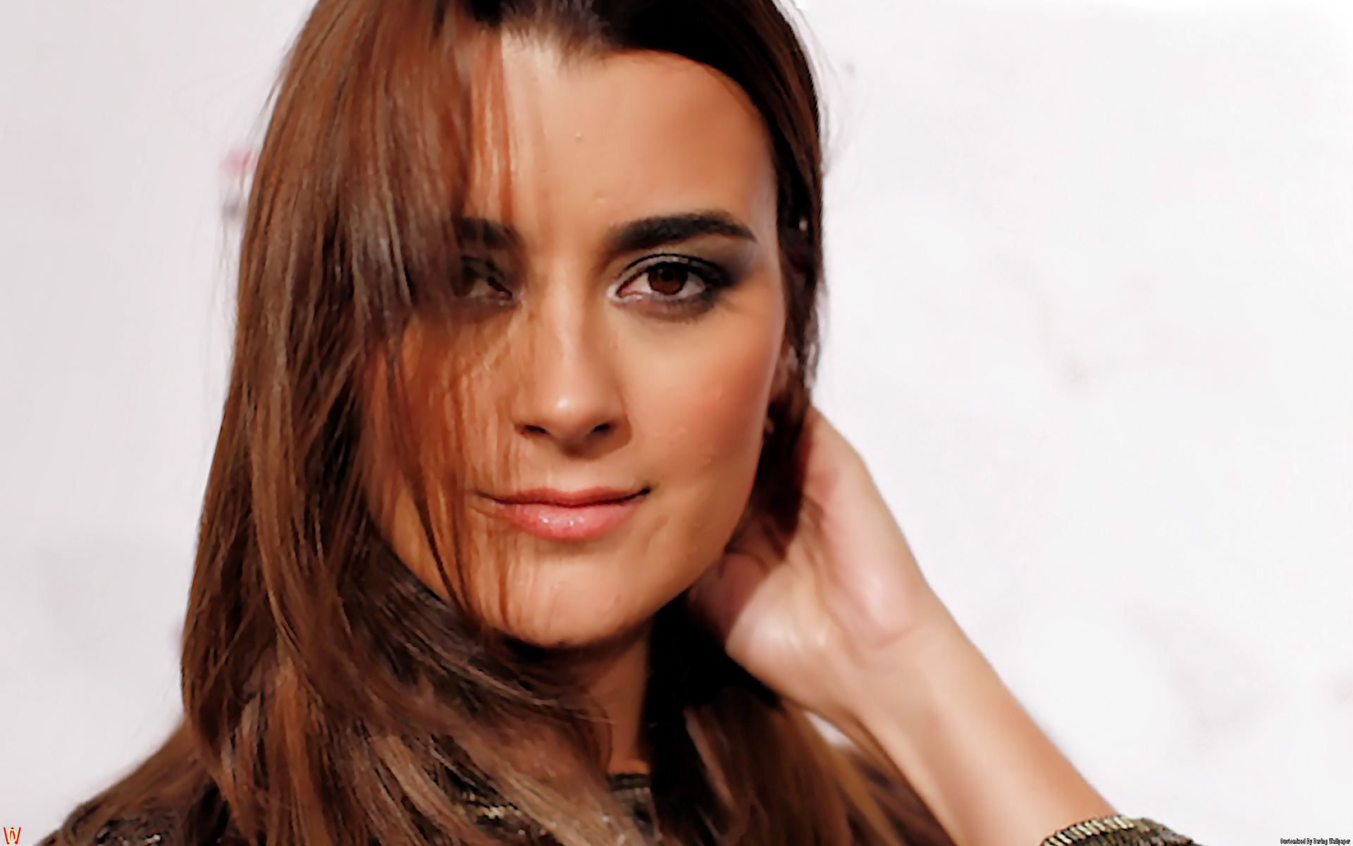 Cote De Pablo as Ziva David NCIS