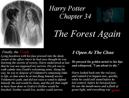 Harry Potter- The Forest Again