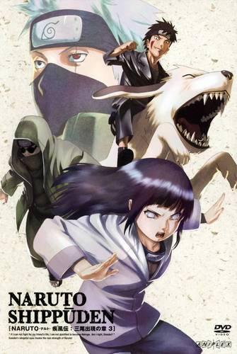 Hinata , Shino , Kiba , Kakashi