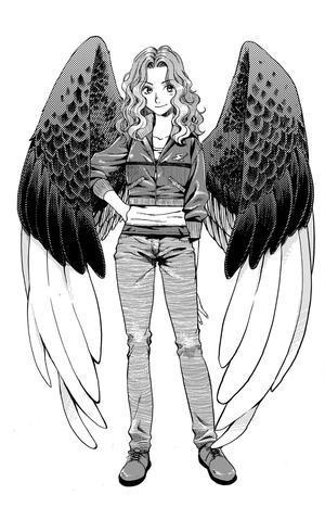 Maximum Ride pictures