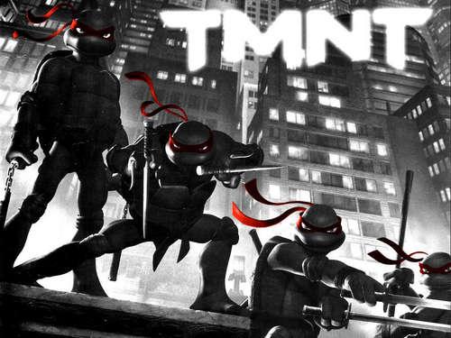 Ninja Turtles Animated Movie