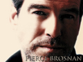 Pierce Brosnan Wall. - pierce-brosnan wallpaper