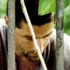 lost foto probably containing a penal institution, common bamboo, and a holding cell titled Season 3