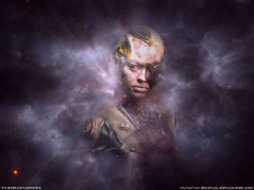 Seven of Nine - star-trek Wallpaper