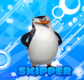 Skipper! Again - penguins-of-madagascar photo
