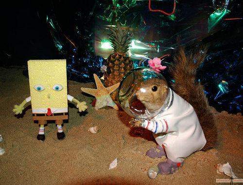 SpongeBob And Friends In Real Life