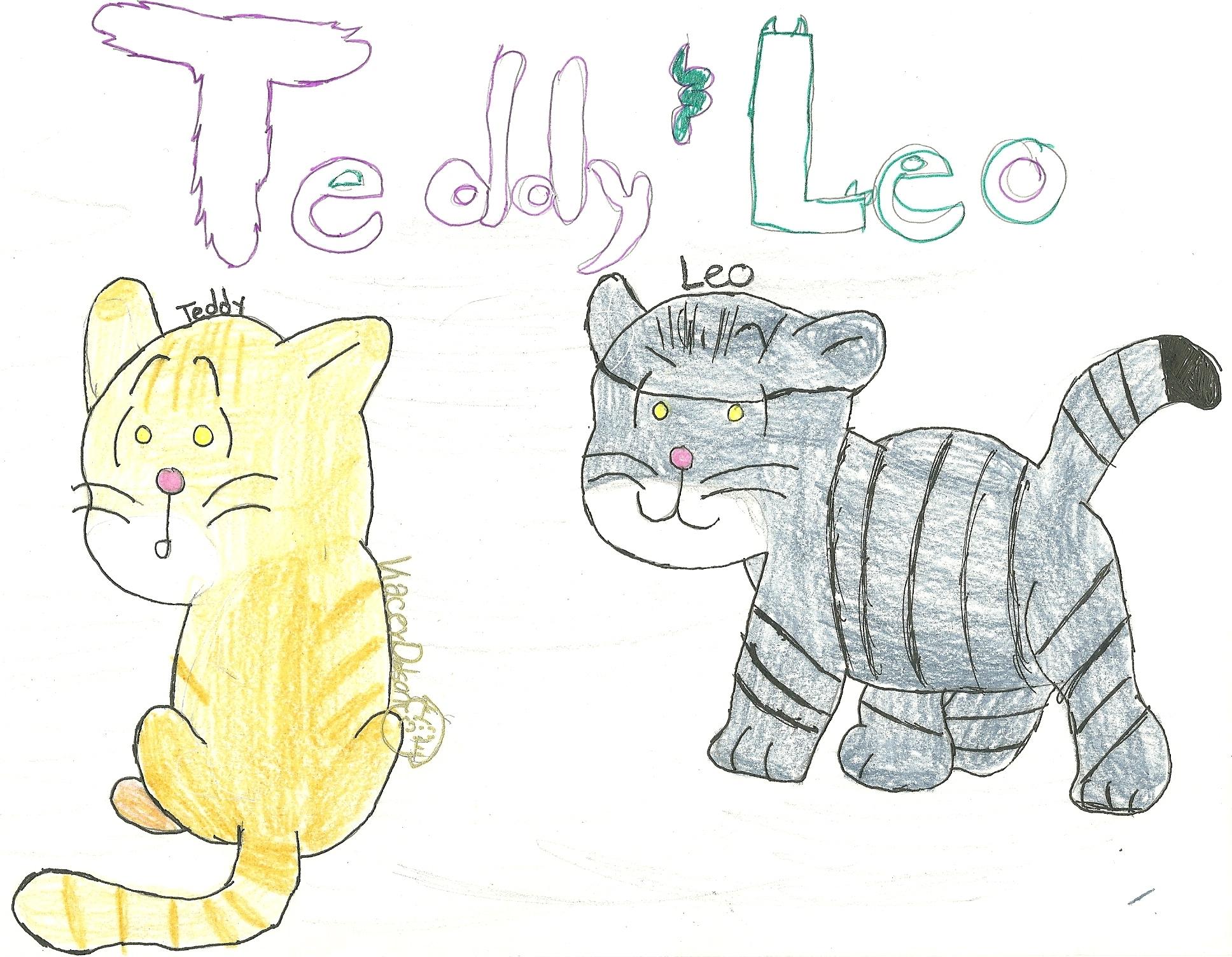 Teddy and Leo; KND Kitties