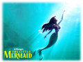 The Little Mermaid - walt-disney-characters wallpaper
