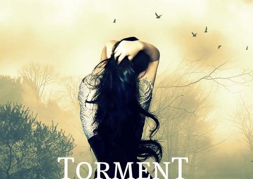 Torment 팬 Art