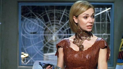 Stargate wallpaper probably with a cocktail dress, a bustier, and a polonaise titled Vanessa Angel