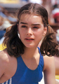 beautiful brooke - brooke-shields photo