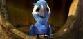 cute baby blu