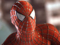 spider-man - super-heroes photo