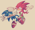 the fight - knuckles-the-echidna photo