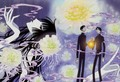 xxxHolic 3