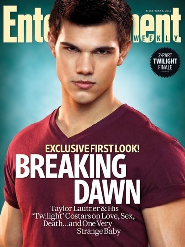 'The Twilight Saga: Breaking Dawn'