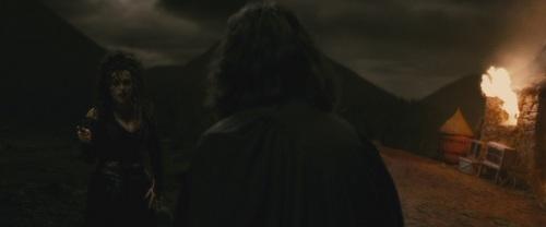 Bellatrix Lestrange fond d'écran with a fontaine entitled Bellatrix in Half-Blood Prince HD