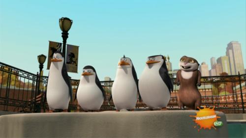 I upendo This Penguins!!!