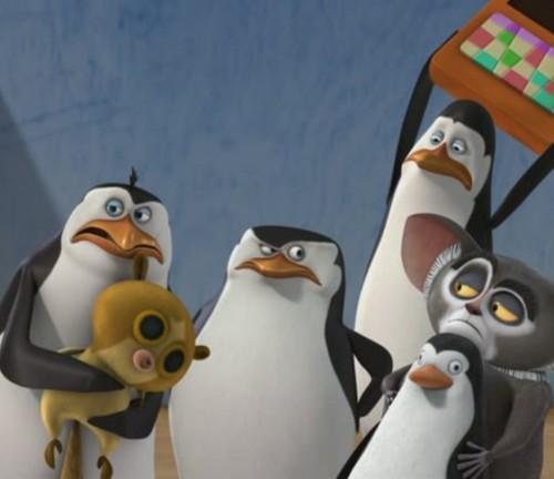 I upendo This Penguins!!!!!!!!!!