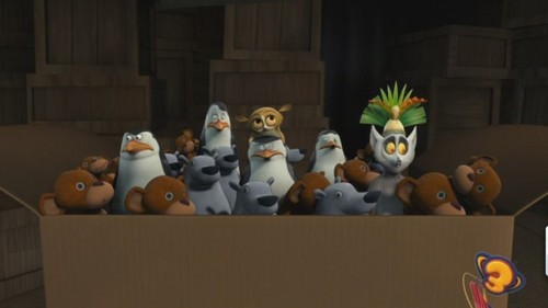 I 爱情 This Penguins!!!