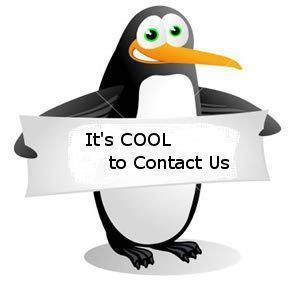 I amor This Penguins!!!