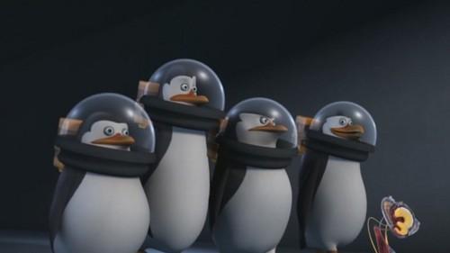 I upendo this Penguins!!!!!!