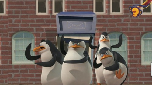 I प्यार this Penguins!!!!!!