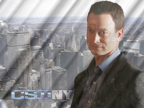 CSI:NY پیپر وال possibly containing a sign, a business suit, and a گاڑی گزر سڑک, کآرریاگیوی entitled Mac Taylor پرستار art