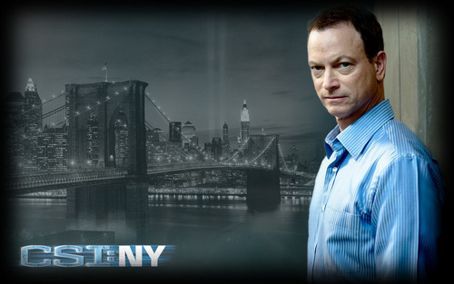 CSI:NY پیپر وال probably with a fountain, a well dressed person, and a portrait entitled Mac Taylor پرستار art