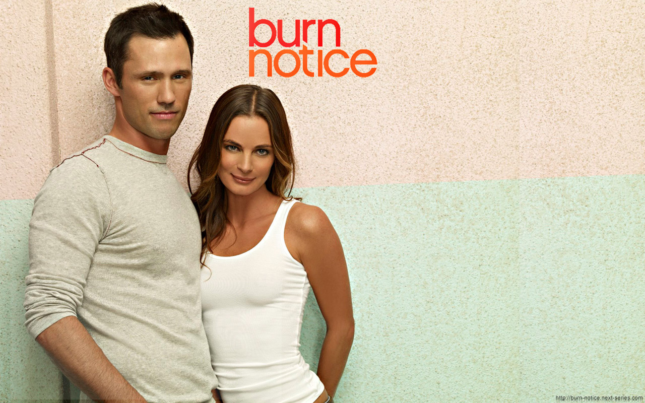 burn notice michael and fiona relationship questions