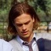 as Dr Spencer Reid - matthew-gray-gubler icon