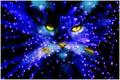 cat in stars