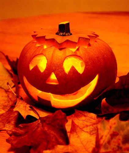 pumpkin!!