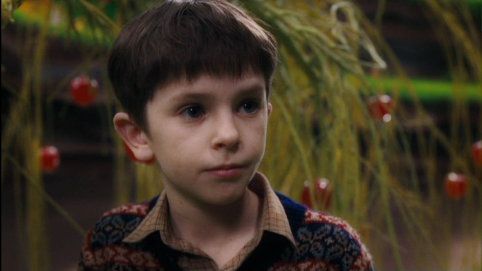 Charlie and the Chocolate Factory - Freddie Highmore Image ...