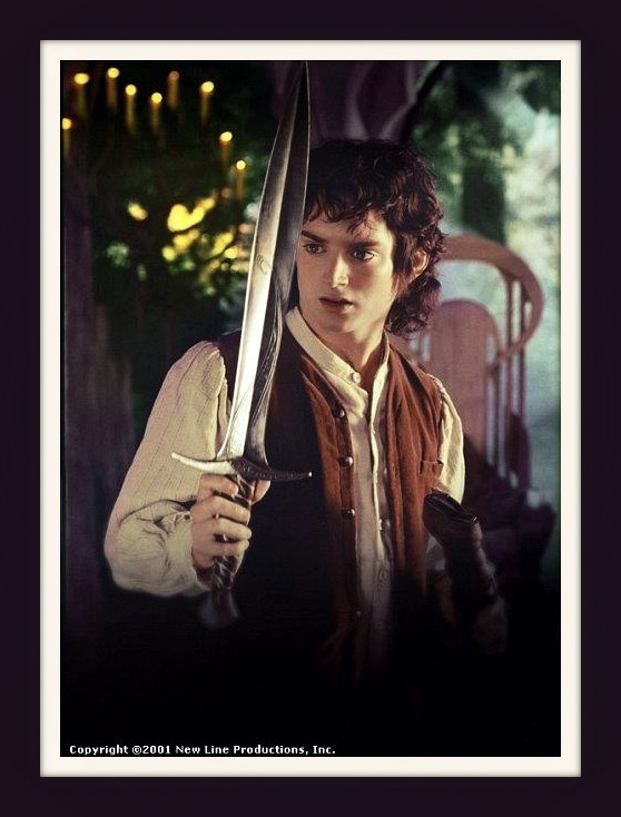 Frodo - Frodo Fan Art ...