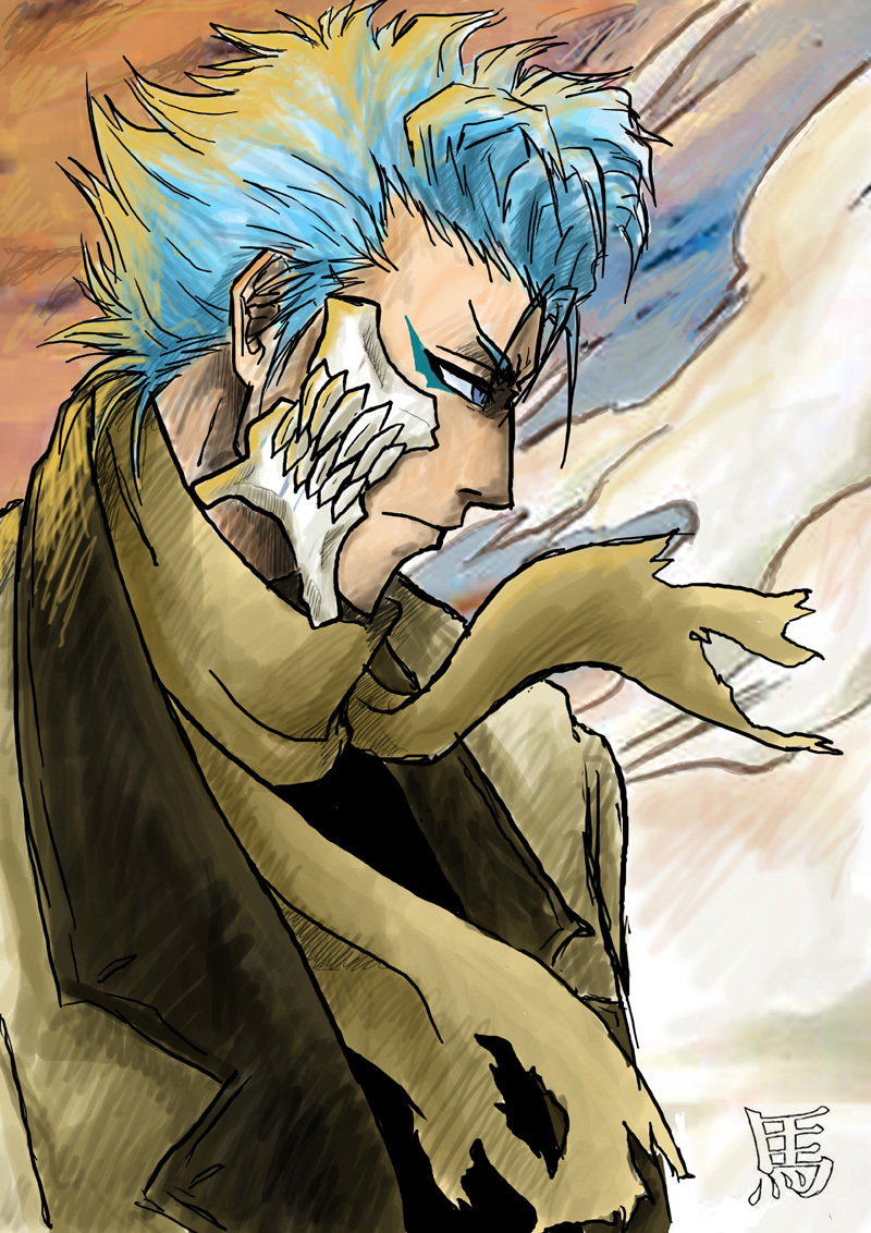Grimmjow Grimmjow Jeagerjaques Photo 21594028 Fanpop