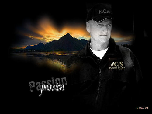 TV Male Characters wallpaper possibly containing a sunset called Leroy Jethro Gibbs [NCIS]