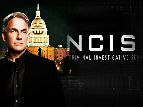 TV Male Characters wallpaper with a business suit entitled Leroy Jethro Gibbs [NCIS]