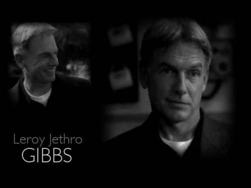 TV Male Characters wallpaper possibly containing a portrait entitled Leroy Jethro Gibbs [NCIS]