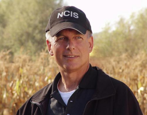TV Male Characters پیپر وال called Leroy Jethro Gibbs