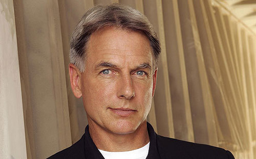 TV Male Characters wallpaper possibly with a business suit, a suit, and a portrait titled Leroy Jethro Gibbs