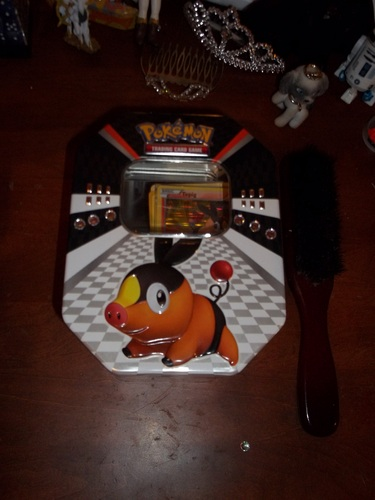 My Tepig Pokemon Box