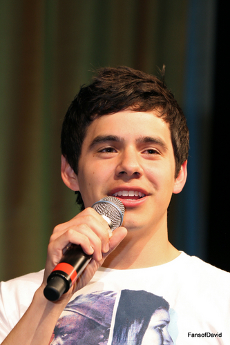 David Archuleta wallpaper with a concert titled New David pics :)