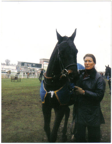 Sea Pigeon Champion Hurdler 1980/81