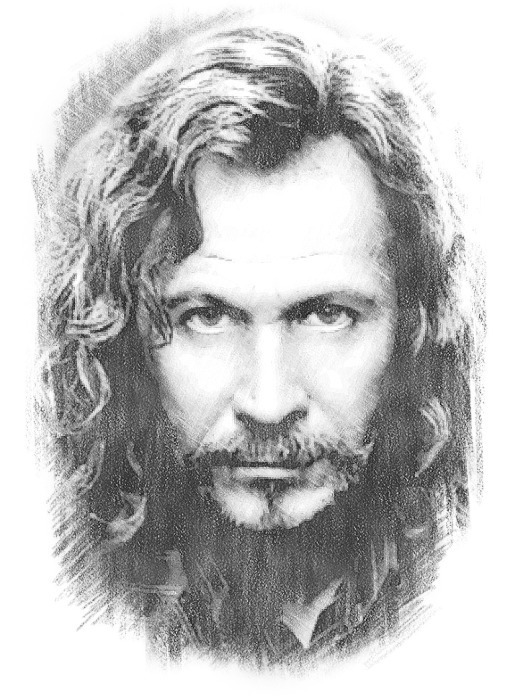 Sirius Sketch The Order Of The Phoenix Photo 21587942
