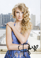 Taylor veloce, swift Signed Poster