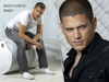 Went in Prison Break - wentworth-miller Icon