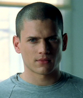 wentworth miller the flash