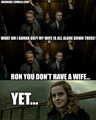 Yet... - harry-potter-vs-twilight photo