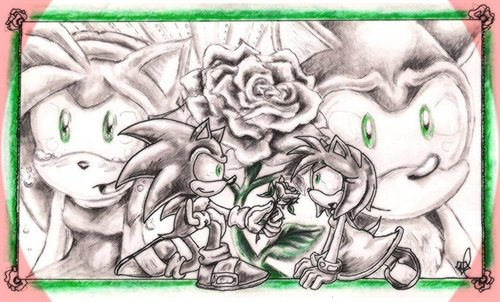 SonAmy wallpaper probably containing a red cabbage entitled behide the white rose